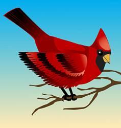 redbird vector image