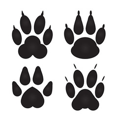 Different cat dog paw prints vector