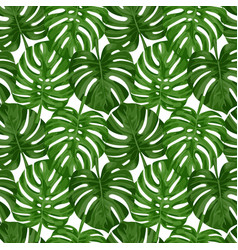 monstera seamless pattern vector image vector image