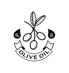 Olive oil logo with ribbon vector