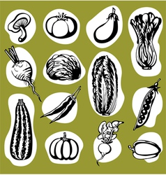Various Vegetables Set vector image