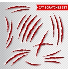 Cat scratches transparent vector