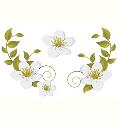 Flowering branch design elements vector