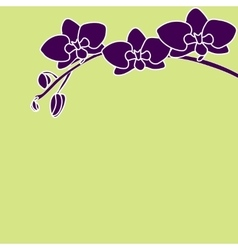 Stylized orchid branch on color background vector