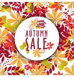 Autumn banners with leaves and berries vector