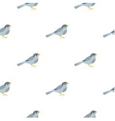 Bird pattern seamless vector