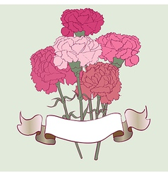 carnation card vector image vector image