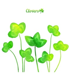 Green watercolor painted summer clover leaves vector