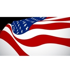 United sates of american flag vector