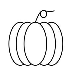 Thin line pumpkin icon vector