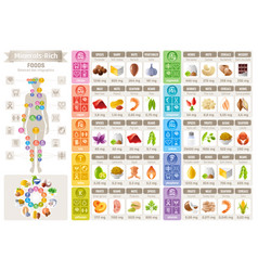 mineral vitamin food icons chart health care flat vector image vector image
