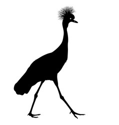 silhouette bird crane on a white background vector image vector image
