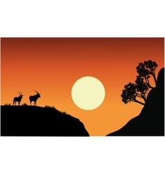 Silhouette of antelope with sun vector
