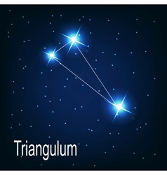 The constellation Triangulum star in the night sky vector image vector image
