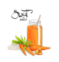 carrot smoothies on a white background vector image