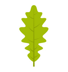 Green oak leaf icon isolated vector