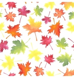 Pattern of colorful maple autumn leaves vector