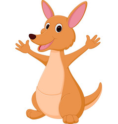 kangaroo cartoon vector image