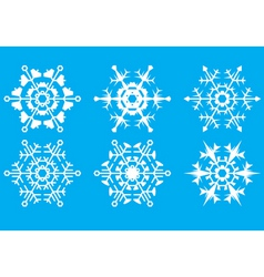 Snowflakes the crystal form vector