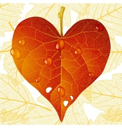 fallen red leaf in the shape of heart vector image