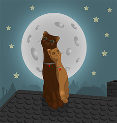 Pair of cats on the roof vector