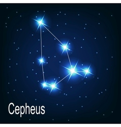 The constellation Cepheus star in the night sky vector image