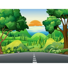 Scene with road and forest vector image