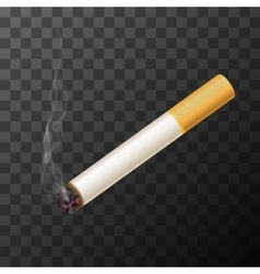 cigarette with white smoke vector image vector image