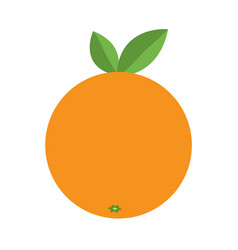 Orange icon healthy food lifestyle fresh fruit vector
