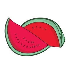 Watermelon fruit vector image