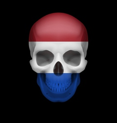 Dutch flag skull vector