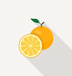 Orange Flat Icon vector image vector image