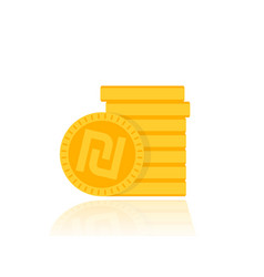 shekel israeli money icon vector image