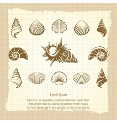 Vintage sea shell silhouettes set vector image vector image