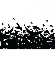 pigeon flight vector image