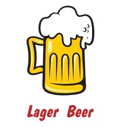 Pint of golden frothy lager or beer vector image