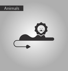 black and white style icon lion vector image