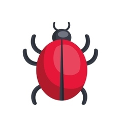bug icon design over white background vector image