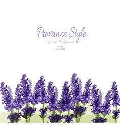 Lavender provance style vector