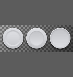 modern dish plate on transparent background vector image vector image
