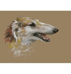 Greyhound animal dog watercolor vector