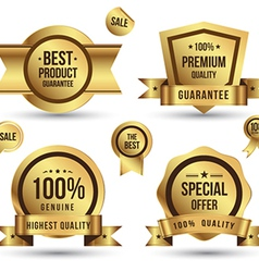 Gold tag set vector image