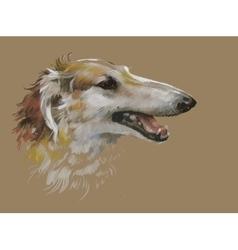 Greyhound animal dog watercolor vector