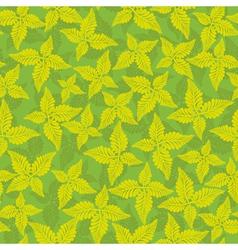 floral vintage design vector image