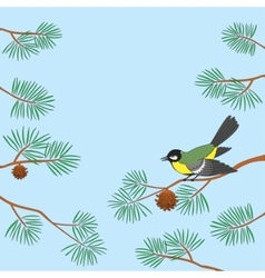 titmouse on pine branch vector image