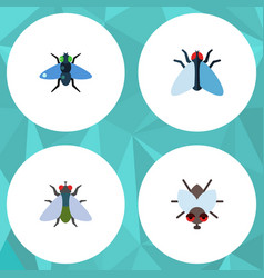 Flat icon buzz set of dung fly buzz and other vector