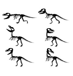 silhouettes of the skeleton of a tyrannosaurus rex vector image