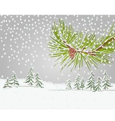 Winter pine branch with snow and pine cone vector