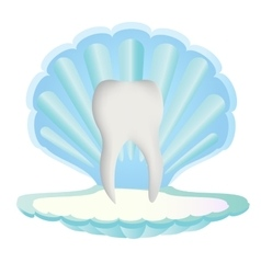 Tooth inside sea shell vector