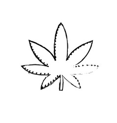 Figure marijuana plant with leaves and medical vector